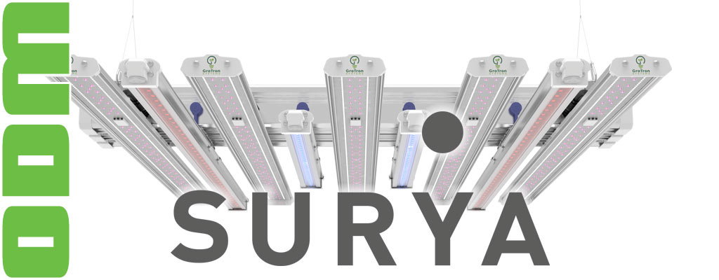 SURYA ADVANCED 600